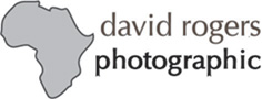 David Rogers Wildlife Photography