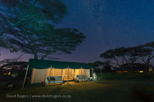 Our stunning tented camp at Ndutu